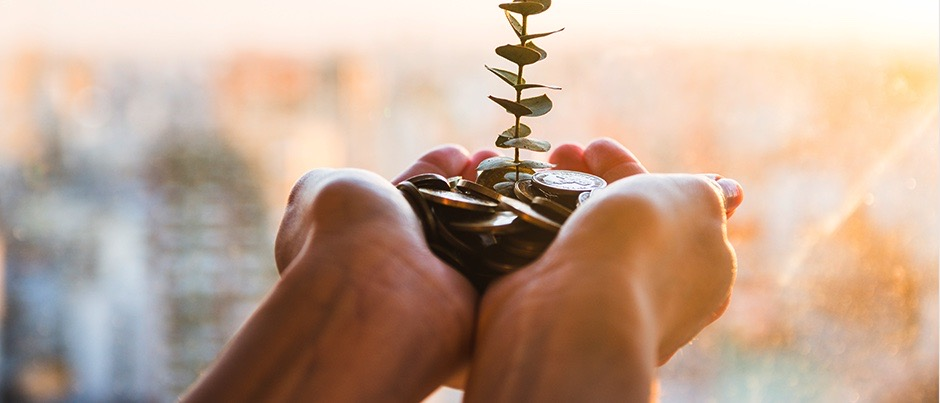A plant growing out of a pile of coins while being cuffed in a pair of hands.